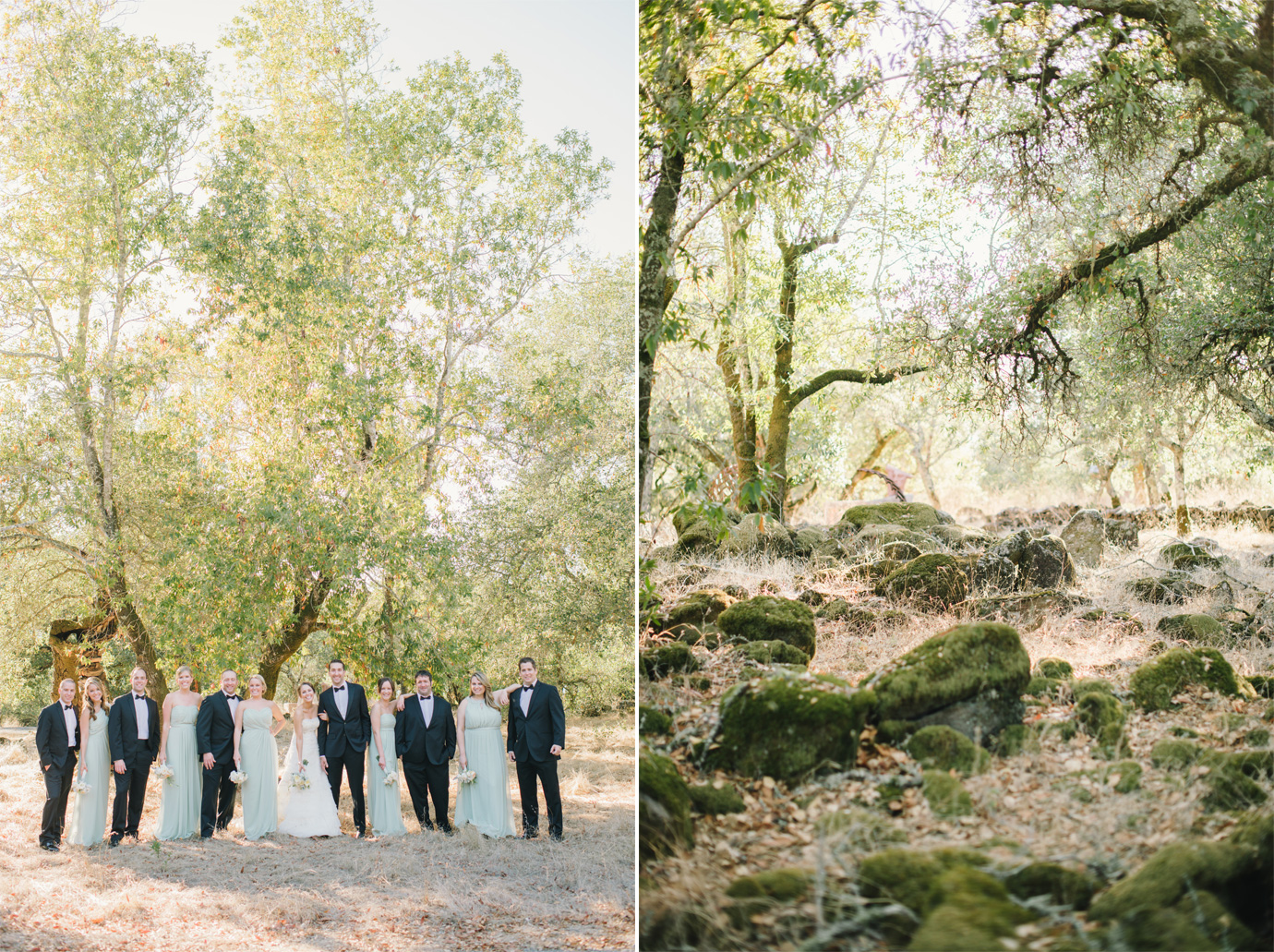 DelbarrMoradiPhotography_winerywedding5